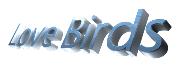 3D Text Maker - Free Online Graphic Design - Love Birds | by Guest